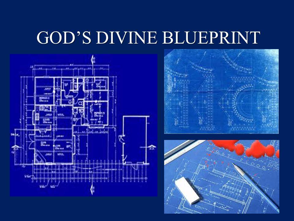 GOD'S DIVINE BLUEPRINT