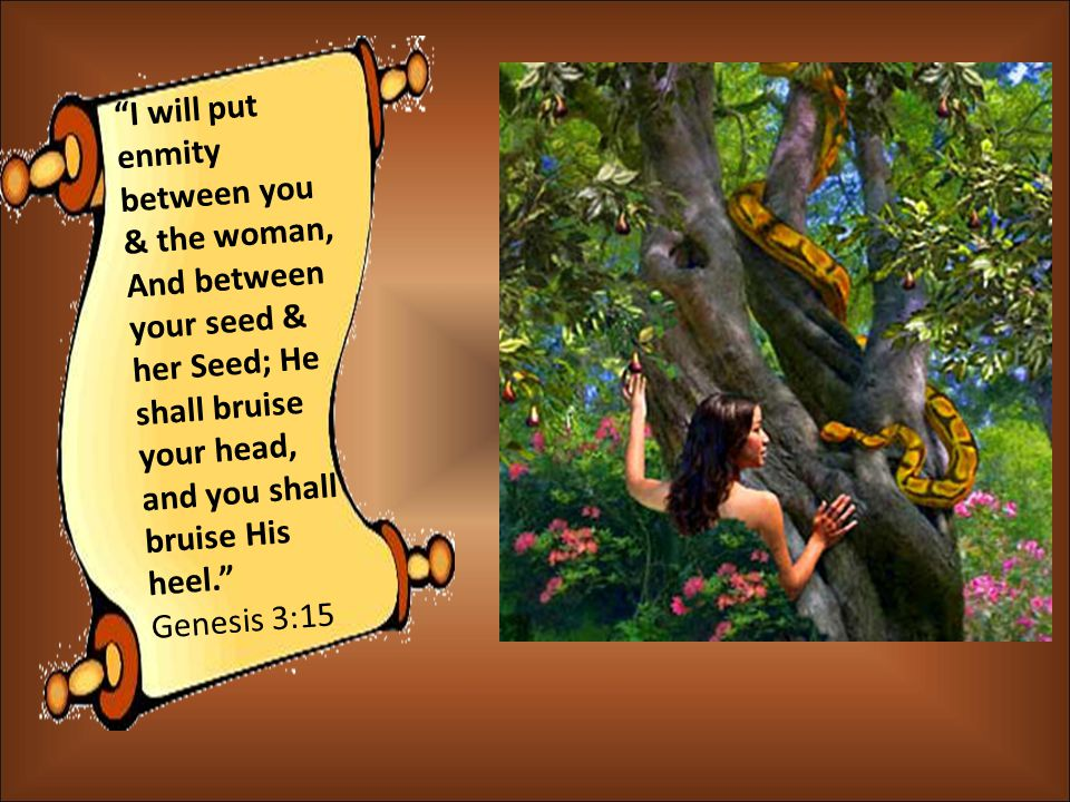I will put enmity between you & the woman, And between your seed & her Seed; He shall bruise your head, and you shall bruise His heel. Genesis 3:15