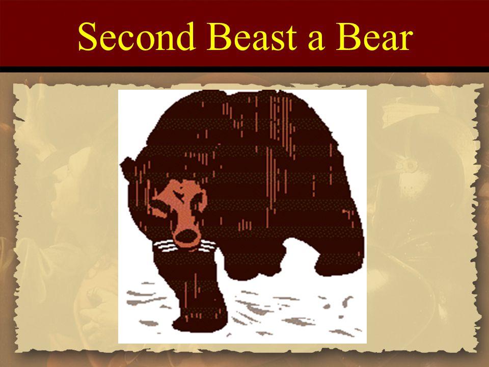 Second Beast a Bear