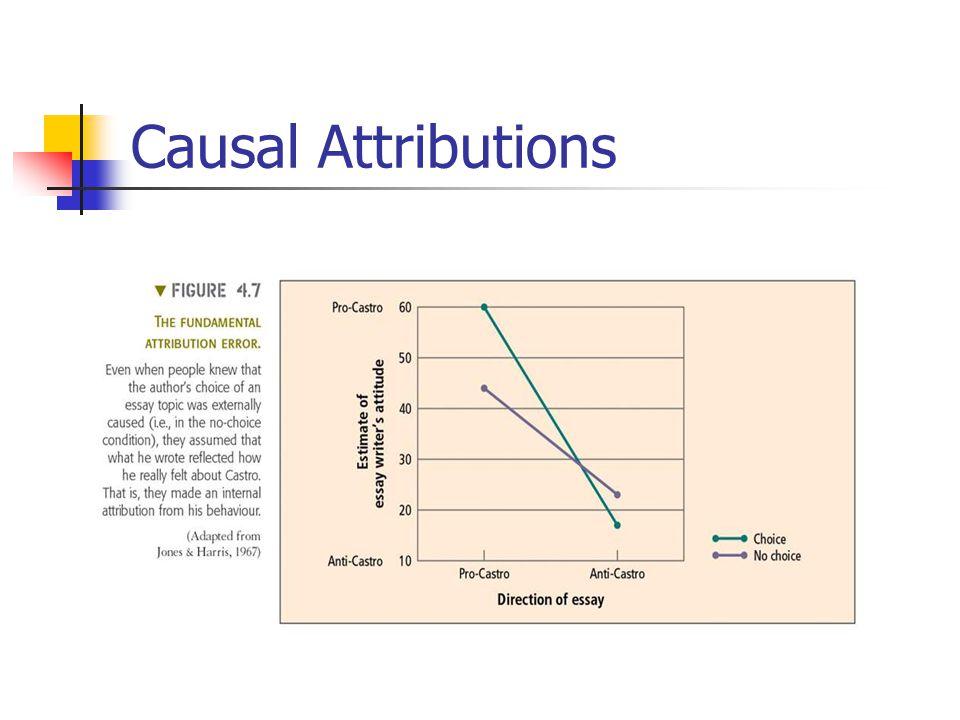 Causal Attributions