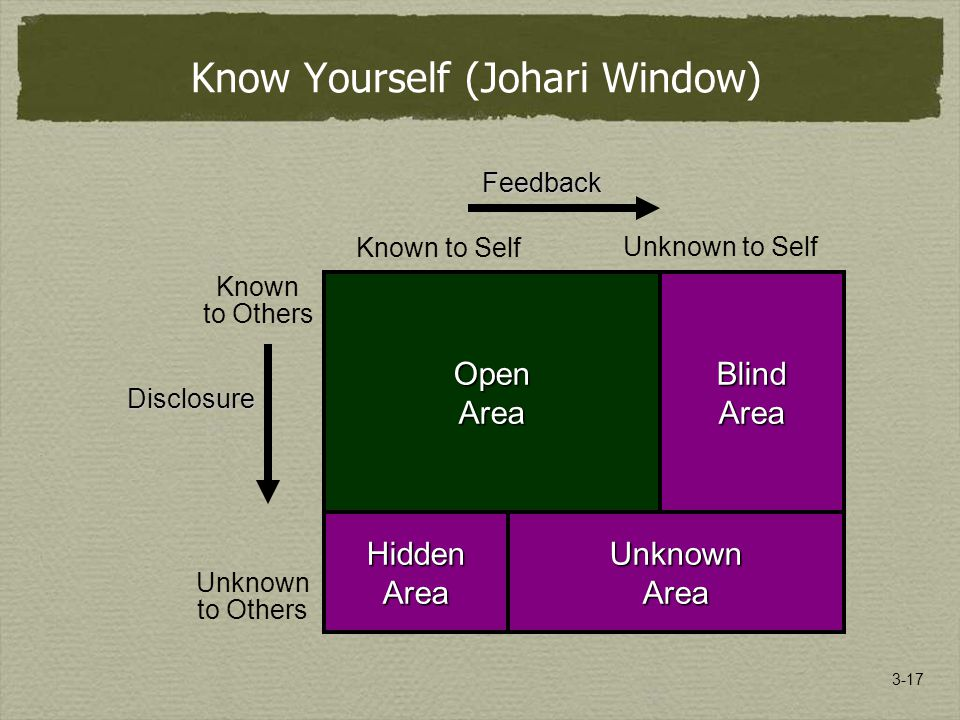 3-17 Known to Self Unknown to Self Known to Others Unknown to Others OpenAreaBlindArea UnknownArea HiddenArea Know Yourself (Johari Window) OpenAreaBlindArea HiddenAreaUnknownArea Disclosure Feedback