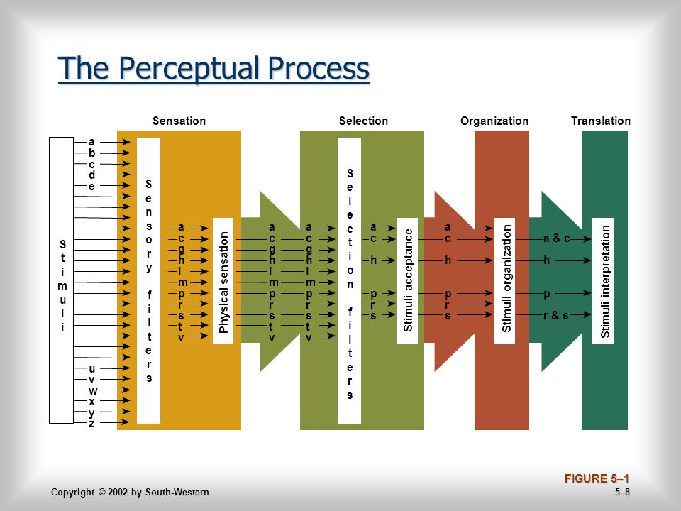 Copyright © 2002 by South-Western 5–8 The Perceptual Process FIGURE 5–1