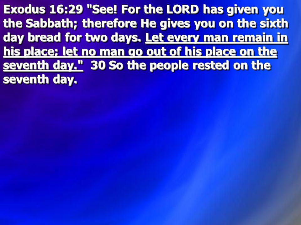 Exodus 16:29 See.