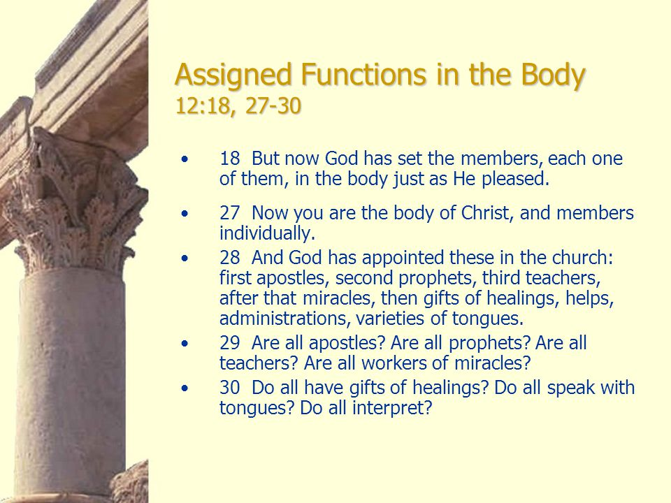 Assigned Functions in the Body 12:18, 27-30 18 But now God has set the members, each one of them, in the body just as He pleased.