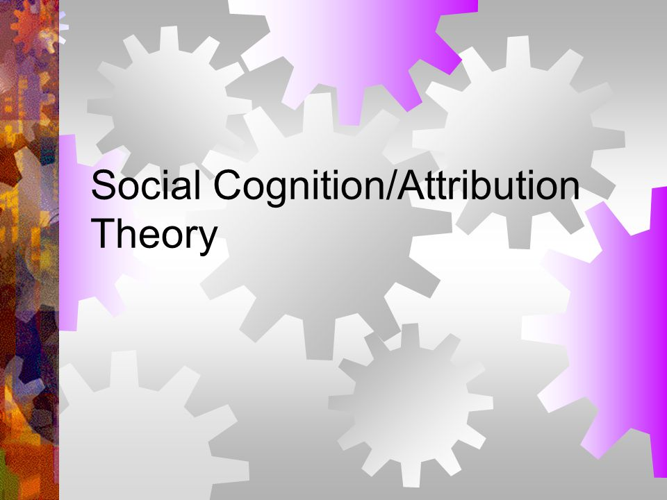 Social Cognition/Attribution Theory