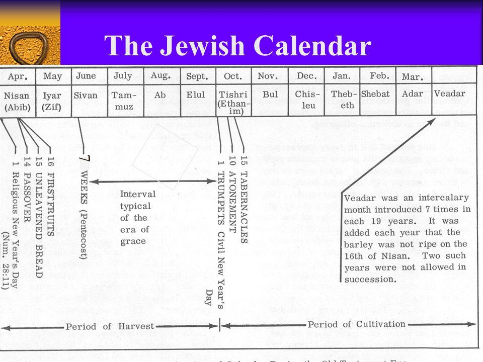 The Jewish Calendar 7
