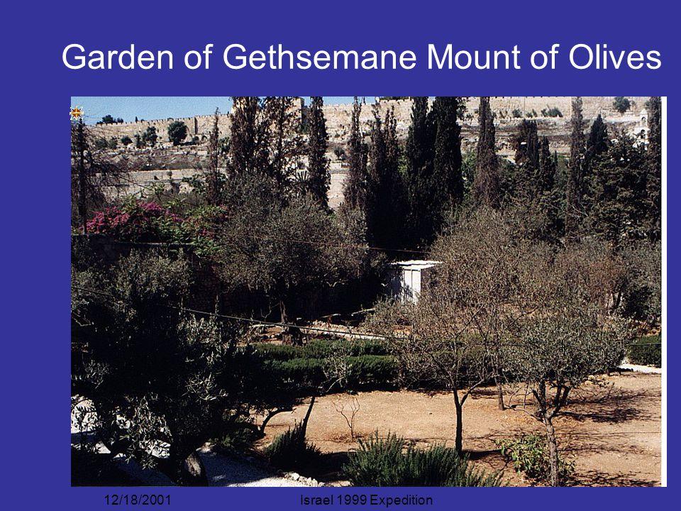 12/18/2001Israel 1999 Expedition Garden of Gethsemane Mount of Olives