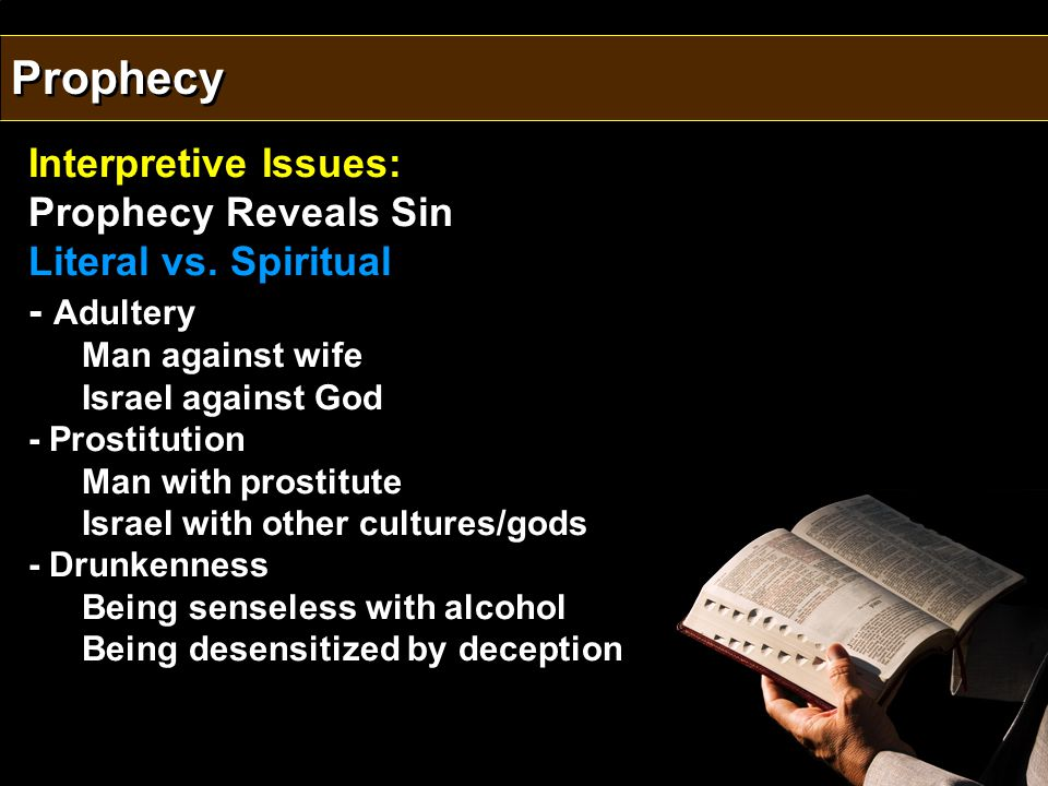Interpretive Issues: Prophecy Reveals Sin Literal vs.