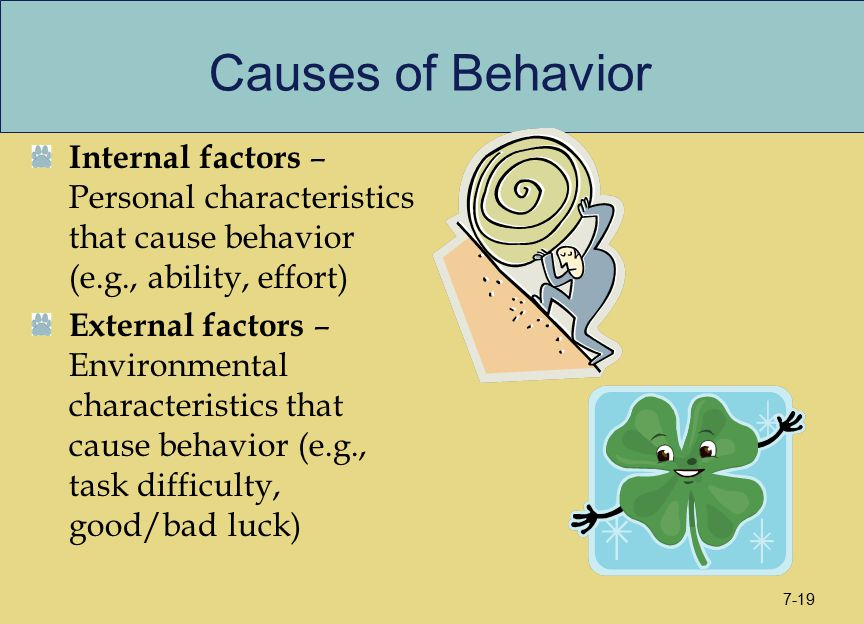 Causes of Behavior Internal factors – Personal characteristics that cause behavior (e.g., ability, effort) External factors – Environmental characteri