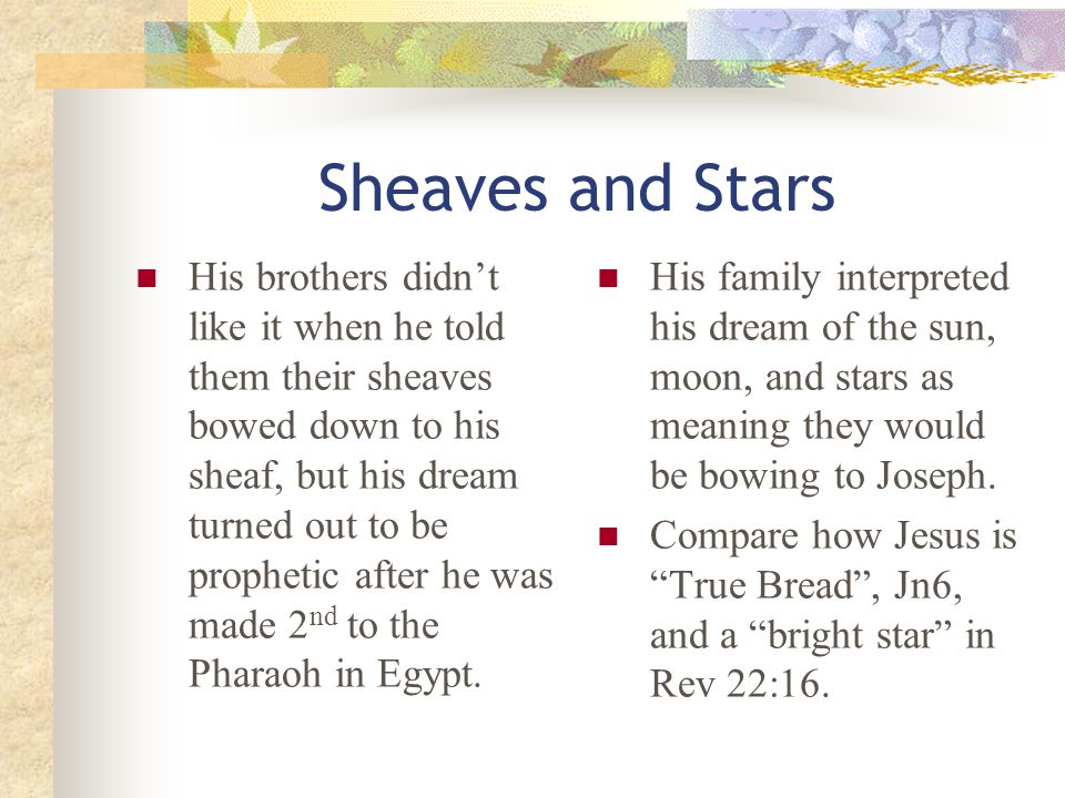 The Joseph Dreams: 3 pair Sheaves and Stars: Gen37:5, 9 -These first two dreams were by Joseph himself.