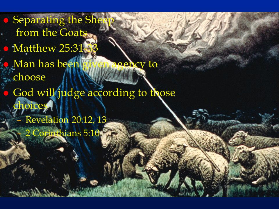 cc64 l Separating the Sheep from the Goats l Matthew 25:31-33 l Man has been given agency to choose l God will judge according to those choices –Revel