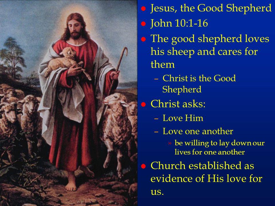 cc72 l Jesus, the Good Shepherd l John 10:1-16 l The good shepherd loves his sheep and cares for them –Christ is the Good Shepherd l Christ asks: –Lov