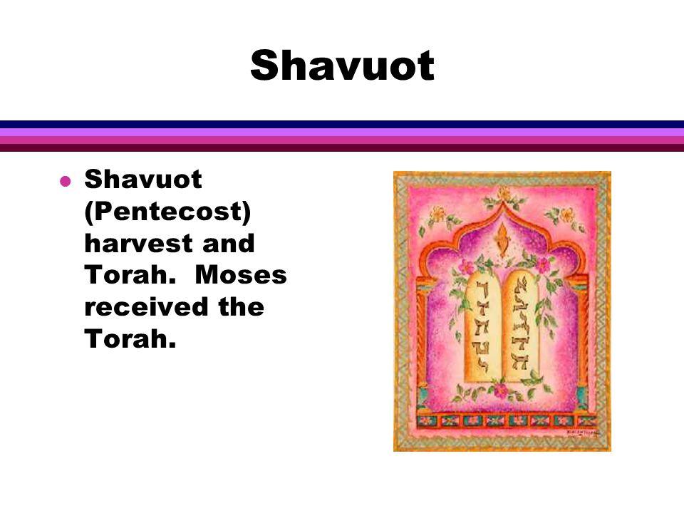 Shavuot l Shavuot (Pentecost) harvest and Torah. Moses received the Torah.