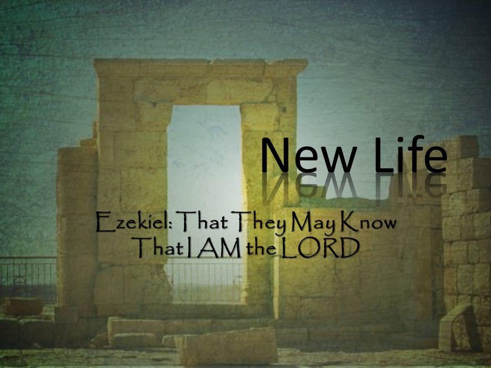 I.Ezekiel s Commission (1:1-3:27) A. The Vision of God s Glory (1:1-28) B.