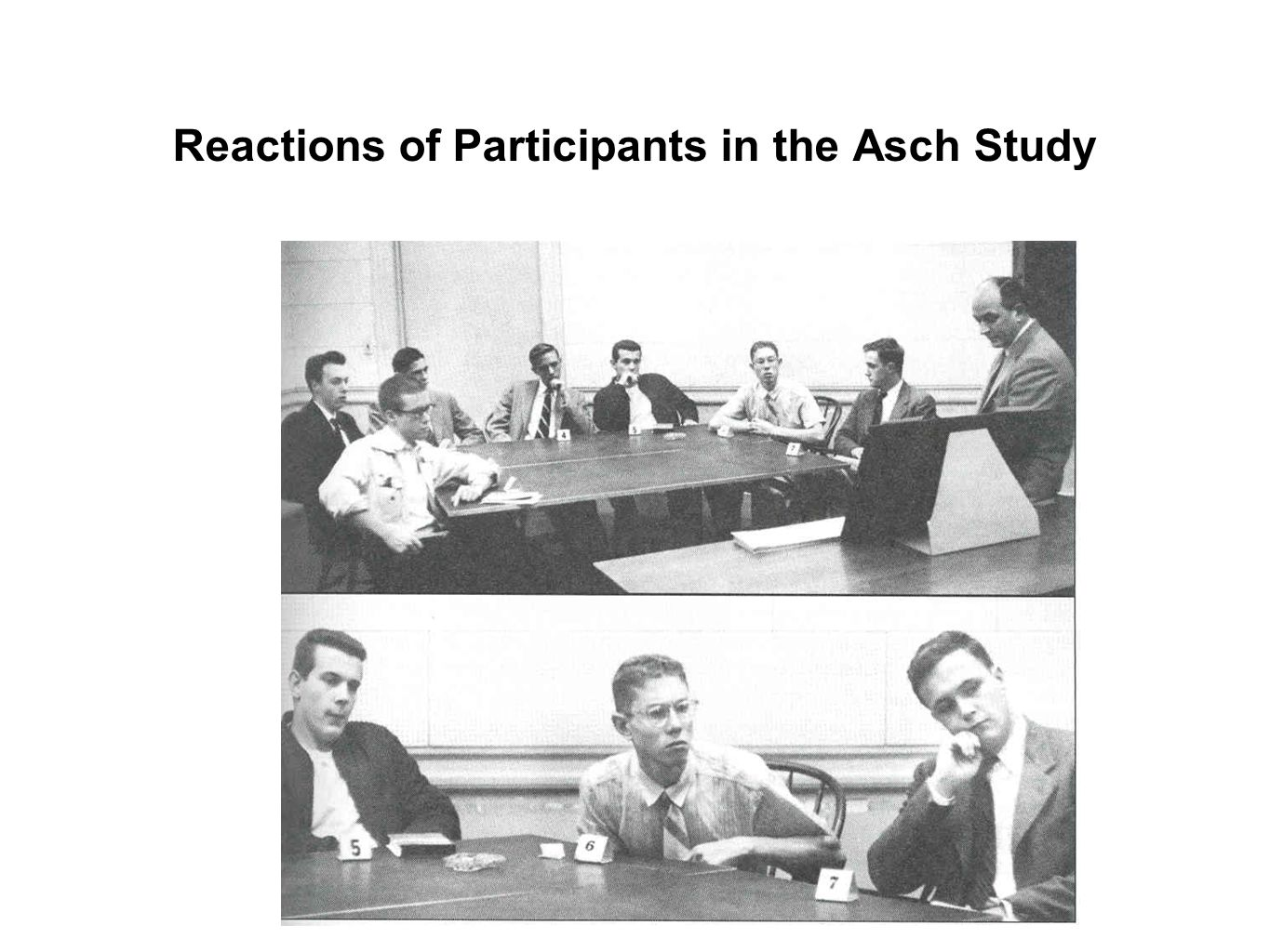 Reactions of Participants in the Asch Study
