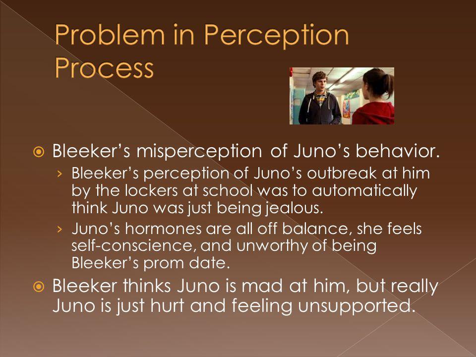 Bleeker's misperception of Juno's behavior.