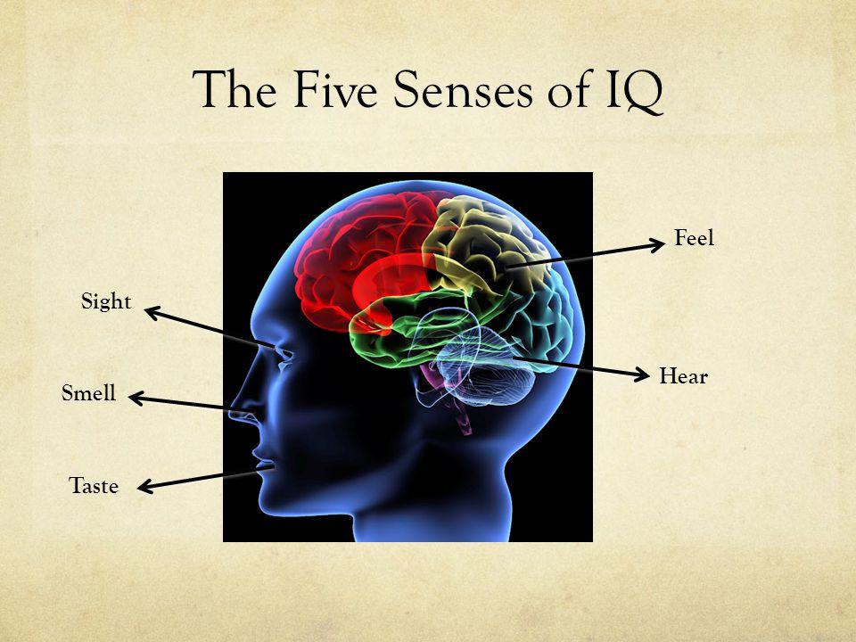 The Five Senses of IQ Sight Smell Taste Feel Hear