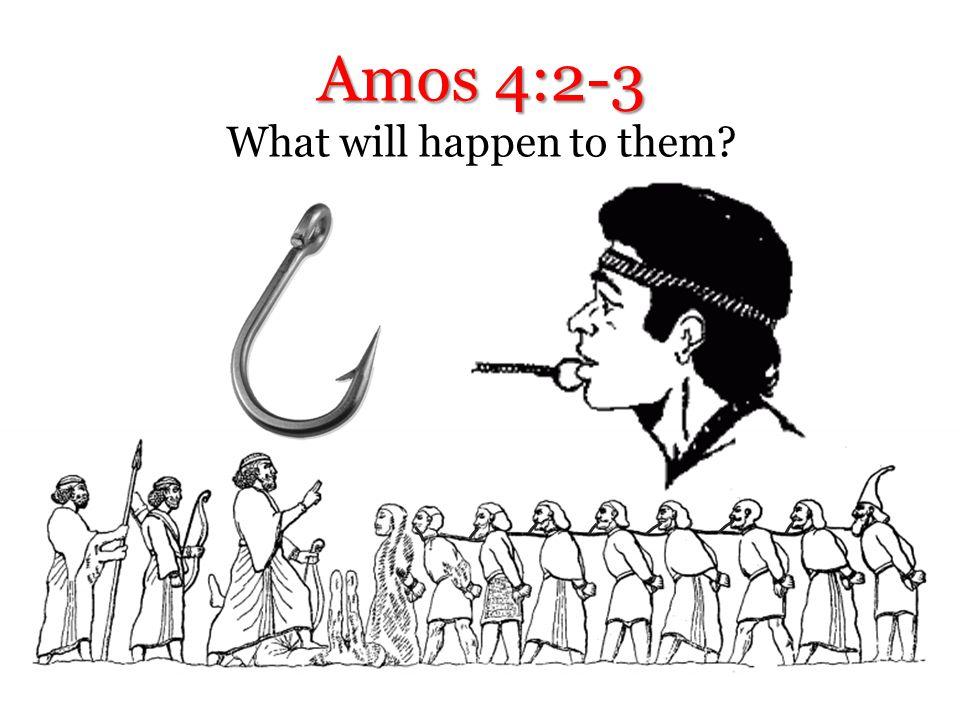 Amos 4:1 Israelite women are like… Popular or not?