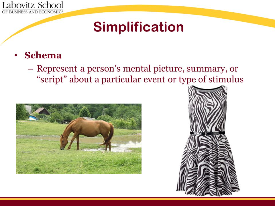 """Simplification Schema – Represent a person's mental picture, summary, or """"script"""" about a particular event or type of stimulus"""