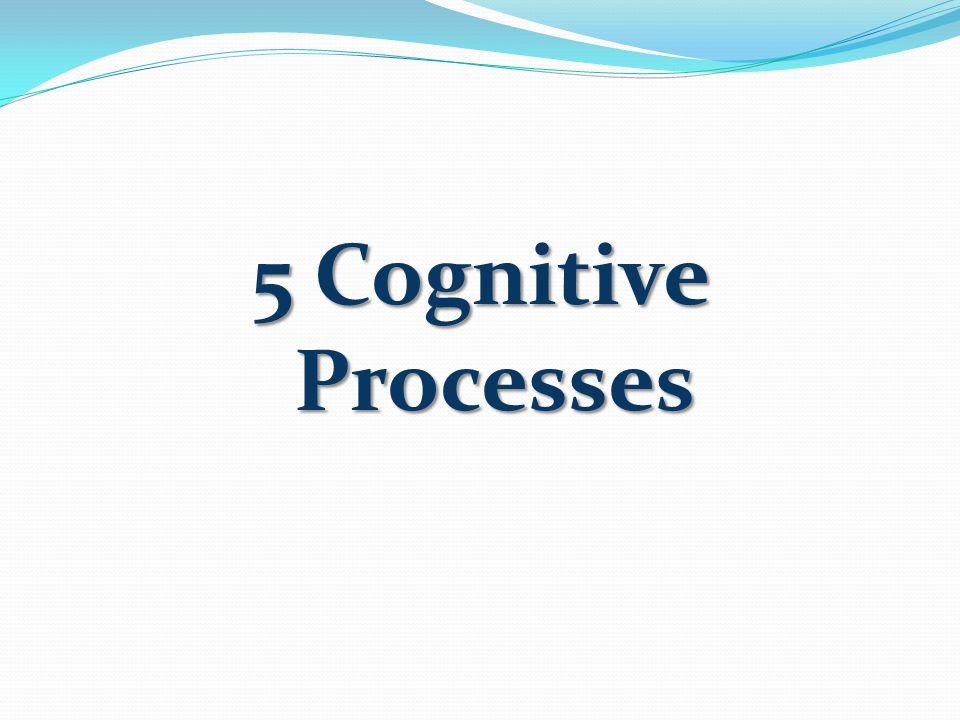 5 Cognitive Processes