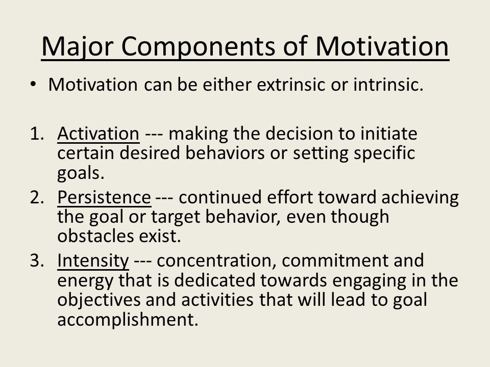 Major Components of Motivation Motivation can be either extrinsic or intrinsic.