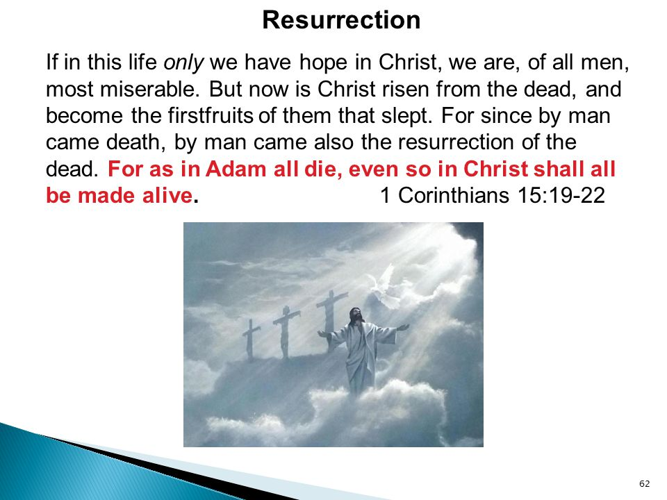 If in this life only we have hope in Christ, we are, of all men, most miserable. But now is Christ risen from the dead, and become the firstfruits of