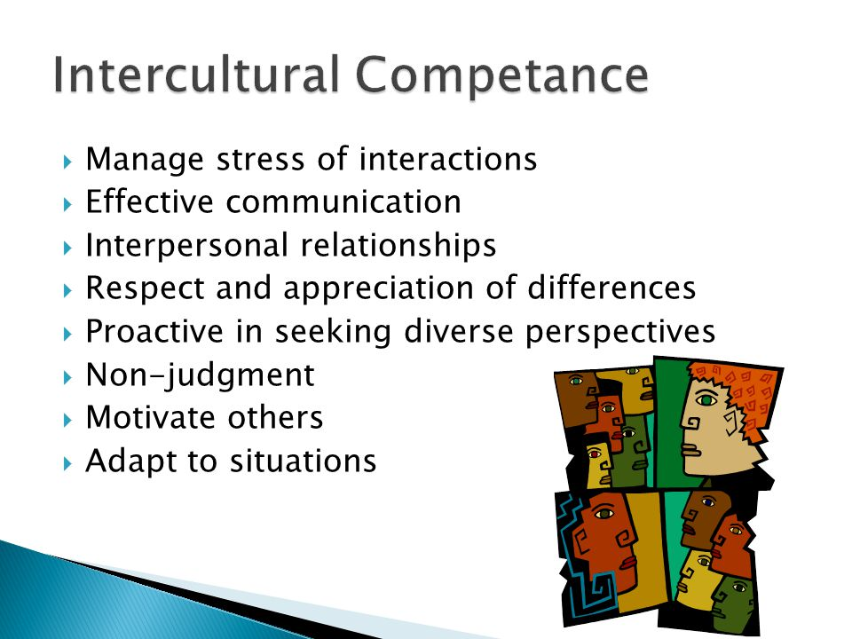  Manage stress of interactions  Effective communication  Interpersonal relationships  Respect and appreciation of differences  Proactive in seeking diverse perspectives  Non-judgment  Motivate others  Adapt to situations