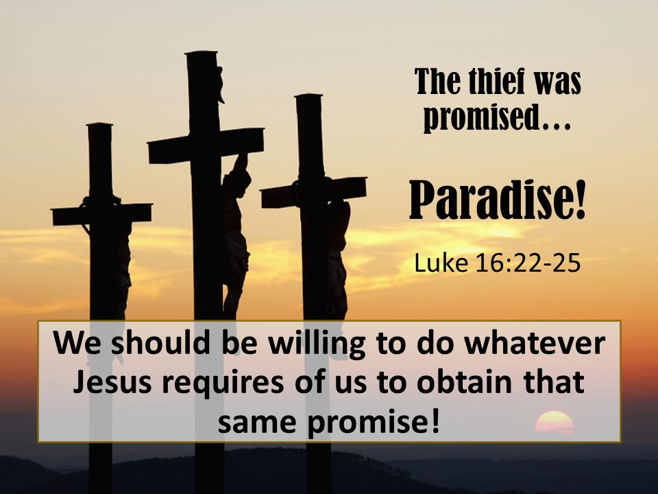 The thief was promised… Paradise.