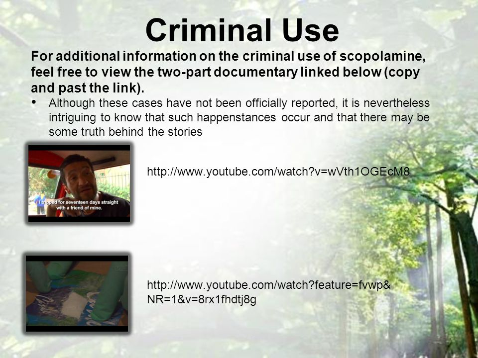 Criminal Use http://www.youtube.com/watch v=wVth1OGEcM8 http://www.youtube.com/watch feature=fvwp& NR=1&v=8rx1fhdtj8g For additional information on the criminal use of scopolamine, feel free to view the two-part documentary linked below (copy and past the link).