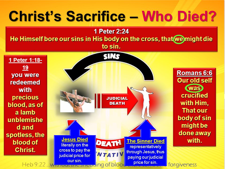 1 Peter 1:18- 19 you were redeemed with precious blood, as of a lamb unblemishe d and spotless, the blood of Christ.