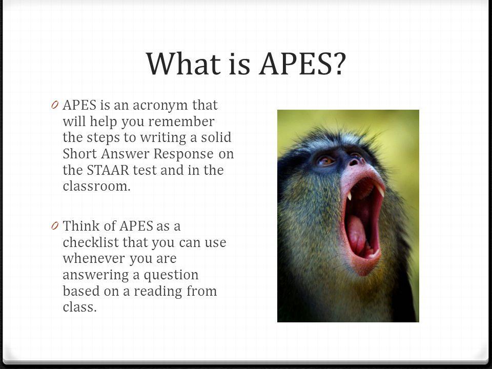 A P E S Answer Prove Explain Sum it Up