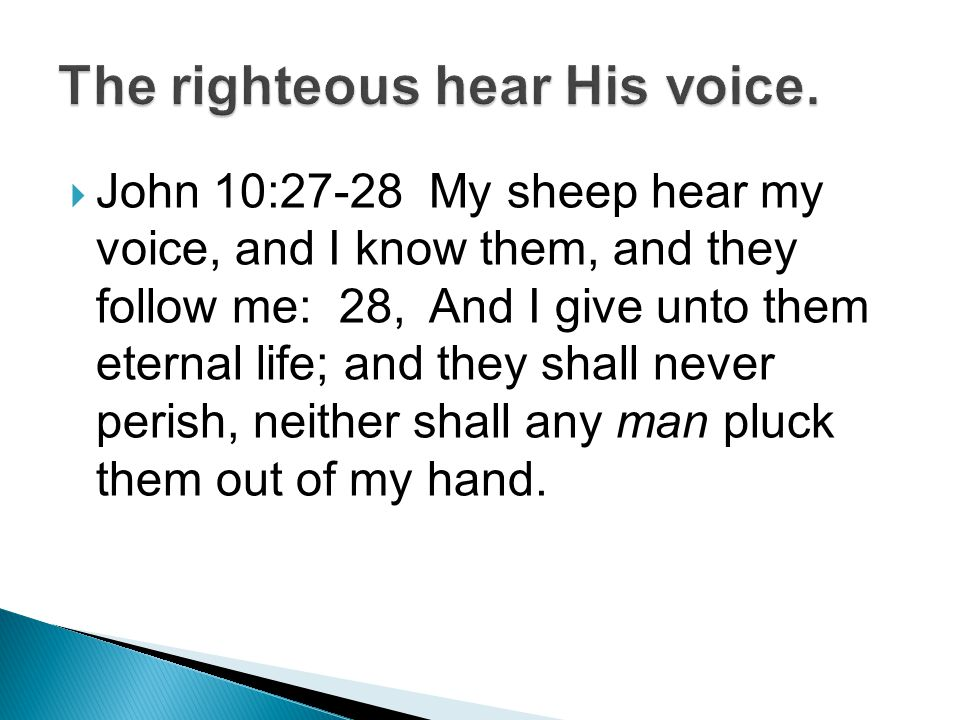  John 10:27-28 My sheep hear my voice, and I know them, and they follow me: 28, And I give unto them eternal life; and they shall never perish, neither shall any man pluck them out of my hand.