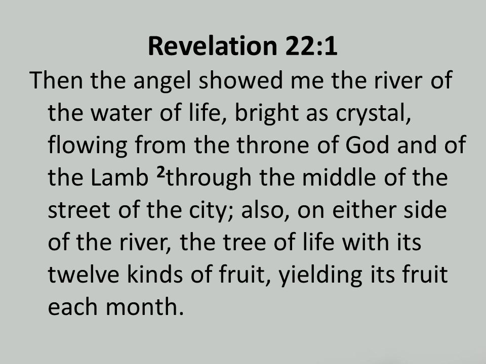Revelation 22:1 Then the angel showed me the river of the water of life, bright as crystal, flowing from the throne of God and of the Lamb 2 through the middle of the street of the city; also, on either side of the river, the tree of life with its twelve kinds of fruit, yielding its fruit each month.