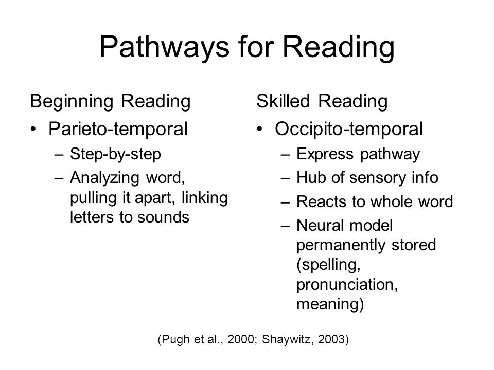 Pathways for Reading Beginning Reading Parieto-temporal –Step-by-step –Analyzing word, pulling it apart, linking letters to sounds Skilled Reading Occipito-temporal –Express pathway –Hub of sensory info –Reacts to whole word –Neural model permanently stored (spelling, pronunciation, meaning) (Pugh et al., 2000; Shaywitz, 2003)