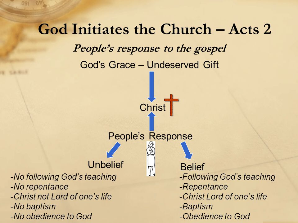 People's response to the gospel God Initiates the Church – Acts 2 God's Grace – Undeserved Gift Christ People's Response Unbelief Belief -No following