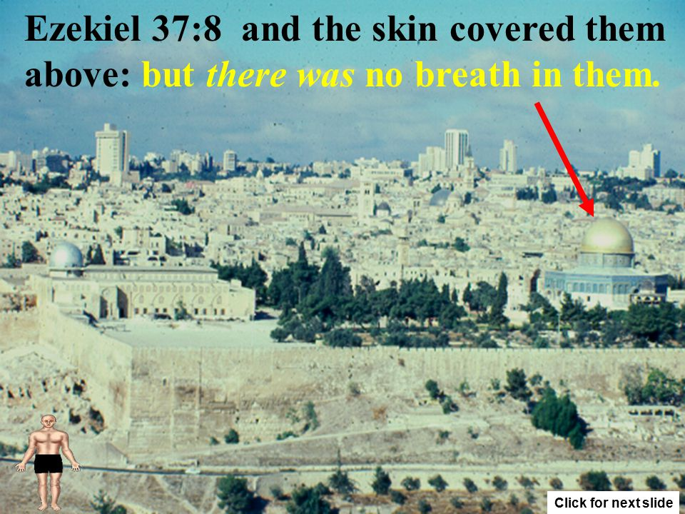 Ezekiel 37:8 And when I beheld, lo, the sinews and the flesh came up upon them, 1 Click for next slide