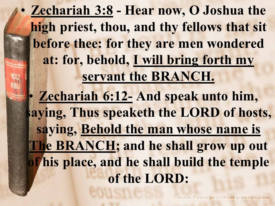Zechariah 3:8 - Hear now, O Joshua the high priest, thou, and thy fellows that sit before thee: for they are men wondered at: for, behold, I will brin