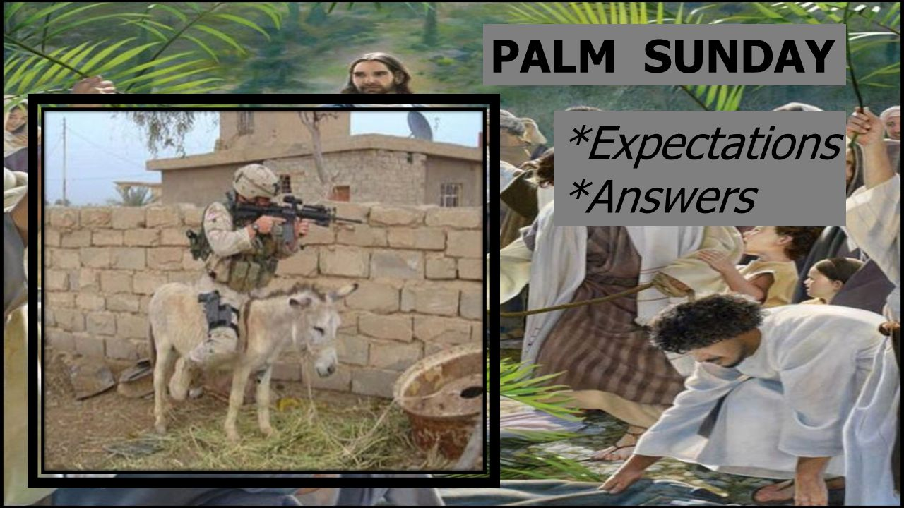 PALM SUNDAY *Expectations *Answers