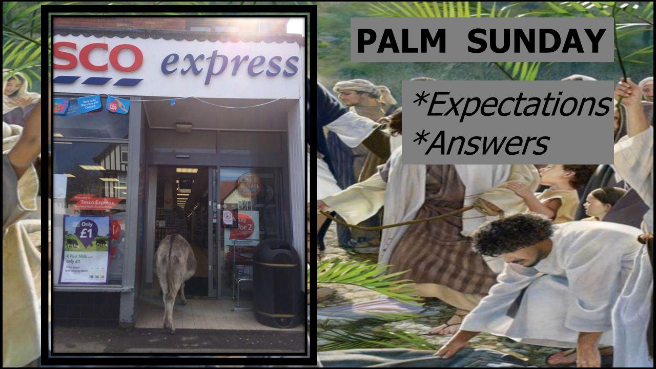 PALM SUNDAY *Expectations *Answers