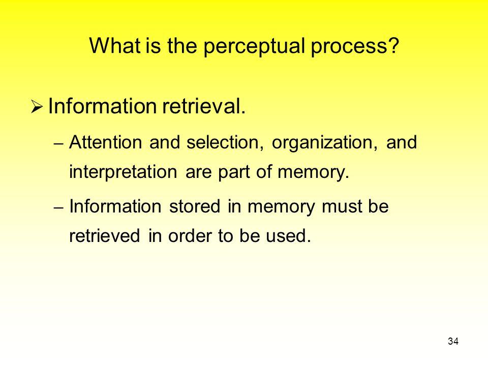 What is the perceptual process.  Information retrieval.
