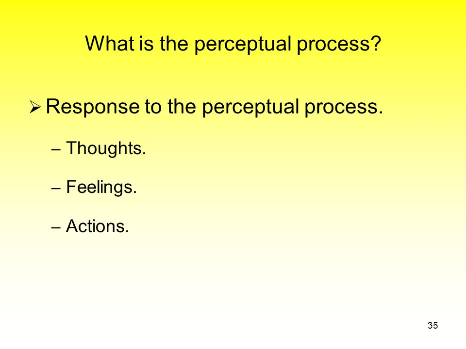 What is the perceptual process.  Response to the perceptual process.
