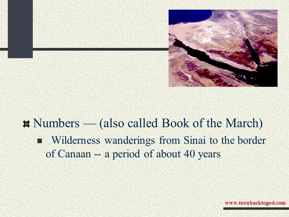 Numbers — (also called Book of the March) Wilderness wanderings from Sinai to the border of Canaan -- a period of about 40 years www.turnbacktogod.com