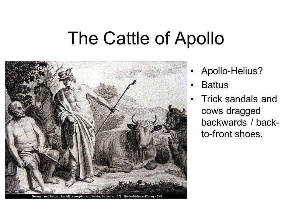 The Cattle of Apollo Apollo-Helius.