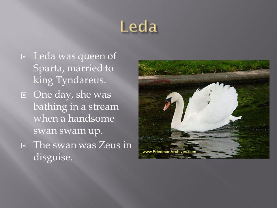  Leda was queen of Sparta, married to king Tyndareus.