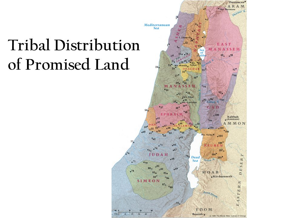 Tribal Distribution of Promised Land
