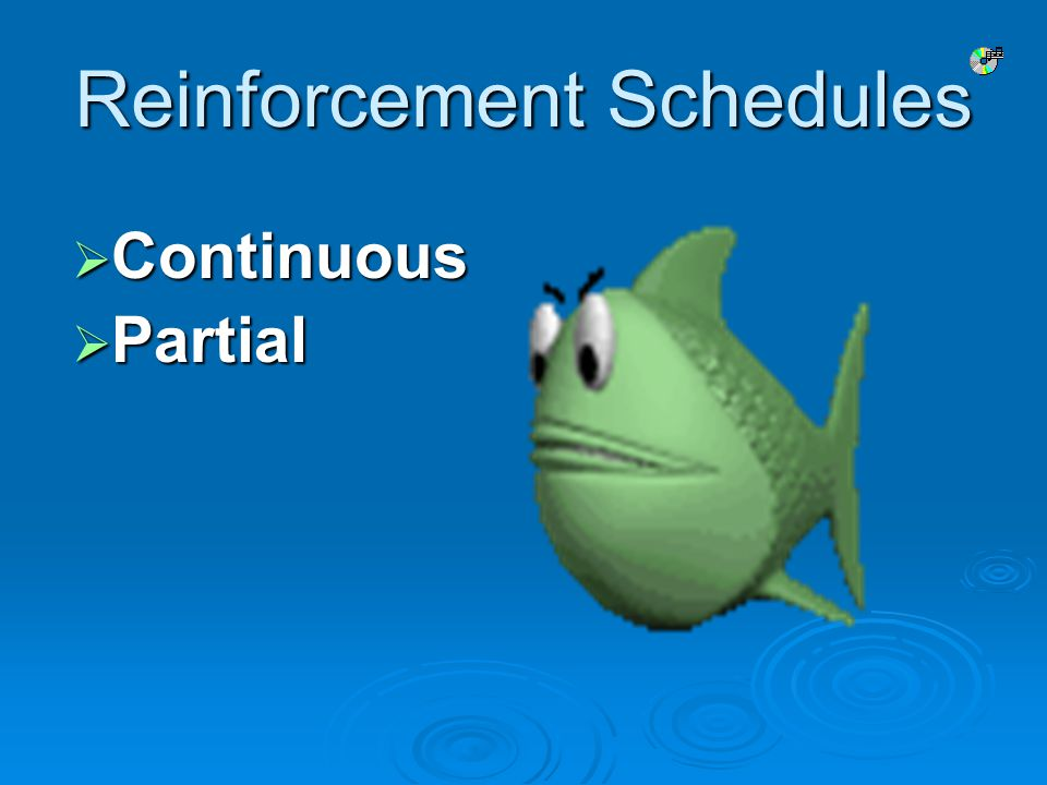 Reinforcement Schedules  Continuous  Partial