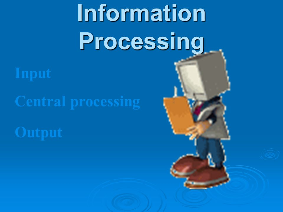 Information Processing Input Central processing Output