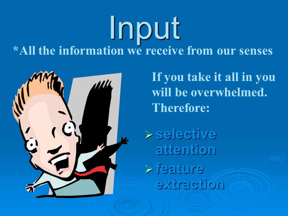 Input  selective attention  feature extraction *All the information we receive from our senses If you take it all in you will be overwhelmed. Theref