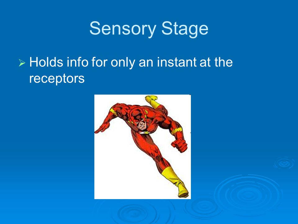 Sensory Stage   Holds info for only an instant at the receptors