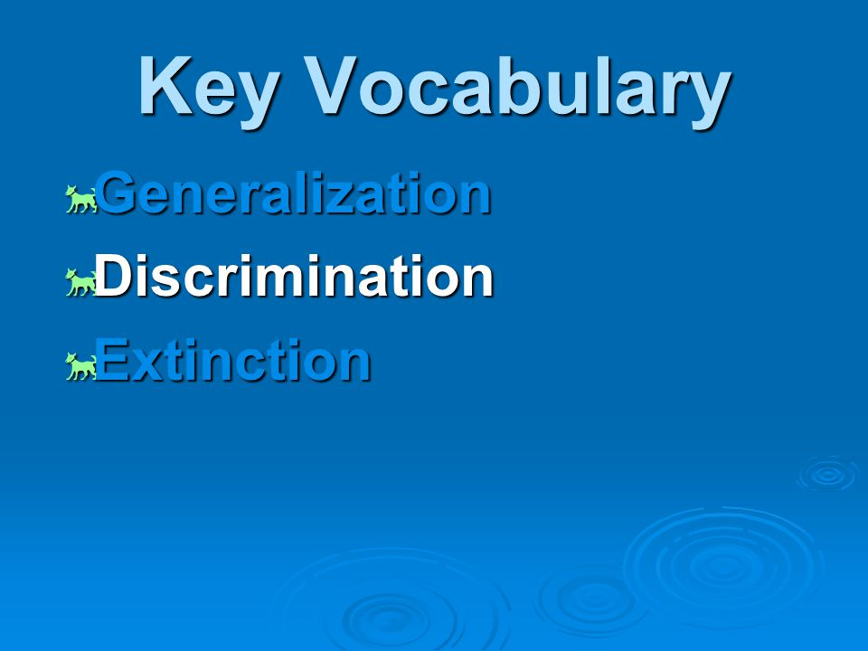 Key Vocabulary  Generalization  Discrimination  Extinction